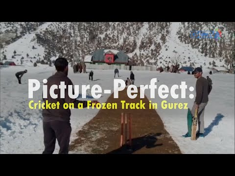 Picture-Perfect: Cricket on a Frozen Track in Gurez