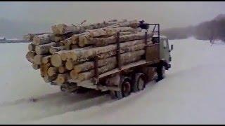 Камаз с березовыми дровами перегруз