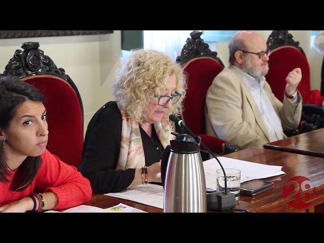 14/03/2019 Pleno Ordinario