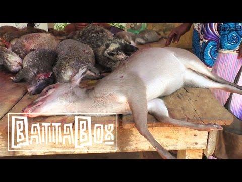 SHOCKING: What You Find In Nigeria's Bush Meat Market