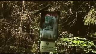 Часть 2 Литва Аникщяй 2010 Дорога с Аникщяя до Пунтукаса