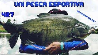 Apenas uma manhã de Pesca no Unipesca - Fishingtur na TV 427
