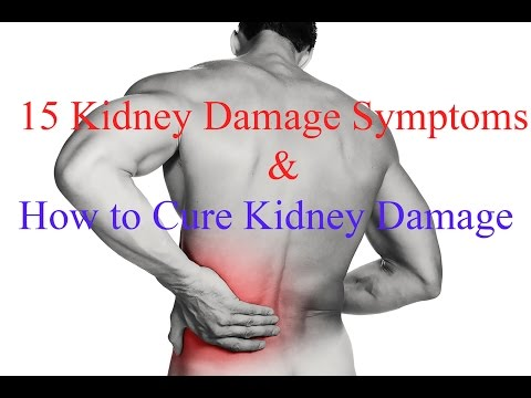 Video 15 Kidney Damage Symptoms