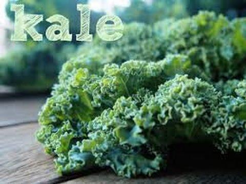 Video KETAHUILAH!! Manfaat Dan Khasiat Sayur Daun Kale