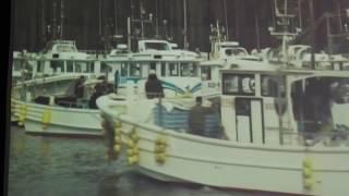 2月25日 由比のさくらえび漁   著作由比漁協