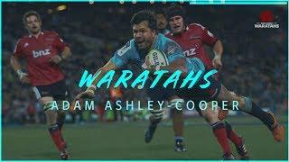 NSW Waratahs - Adam Ashley-Cooper Is Back!