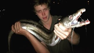 EP 2 - MONSTER EEL FISHING - Catch n Cook - Using Freshly Caught MULLET! | TDK