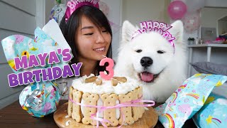 My Dogs EXCITING Third Birthday!!! [With DIY Dog Birthday Cake Recipe]