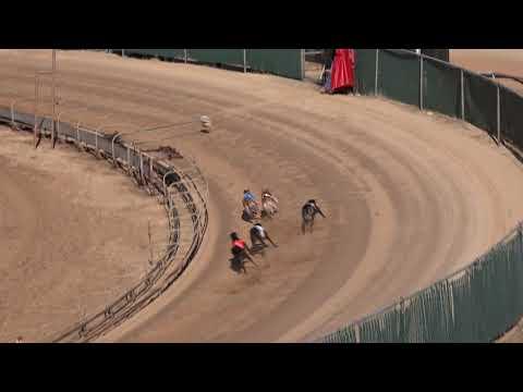 Race 25