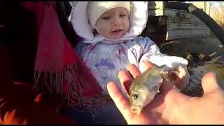Рыбалка в усть лабинском районе краснодарского края