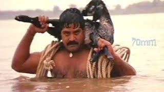 Srihari Best Movie Scene   Telugu SCENES   70MM Movies