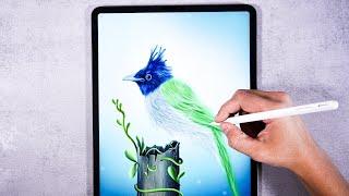 Realistic Bird Illustration Art 🐦 IPad Pro - Procreate