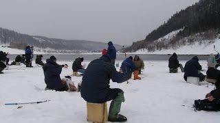 Fish Finder тестирование зимой