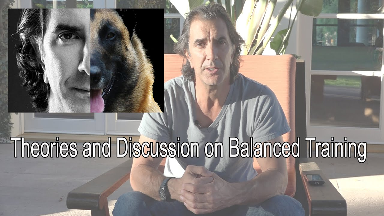 Robert Cabral's Dog Training Introduction - Balanced