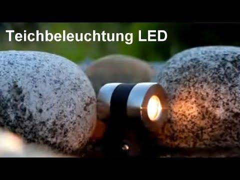 Teichbeleuchtung - Eine Teichbeleuchtung mit LED Teichleuchten für zauberhafte Lichtakzente - Video
