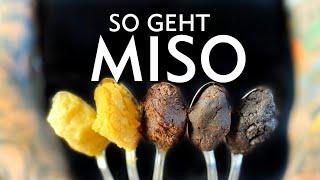 Kochen mit Miso - Der ultimative Miso Guide für Anfänger (3 schnelle Rezepte)