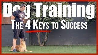 Dog Training - The 4 Keys to Success