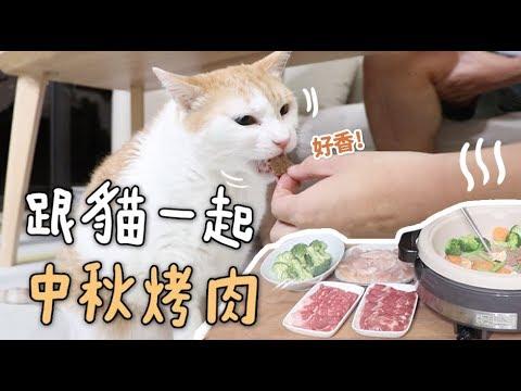 幸福的貓咪也過中秋節