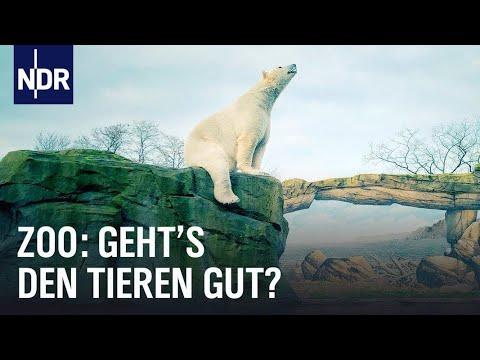 Das System Zoo  | NDR | Doku | 45 Min
