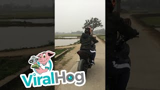 An Unexpected Road Block || ViralHog | Kholo.pk