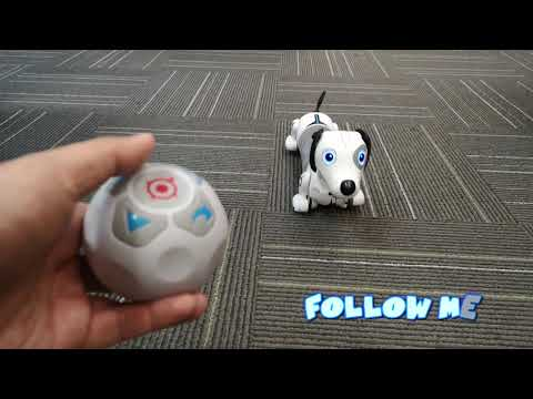 Youtube Video for Robo Dash - Your Own Interactive Puppy!