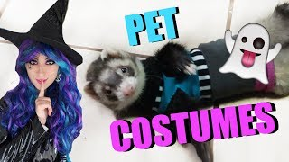 HALLOWEEN COSTUMES For My Pets! | EMZOTIC