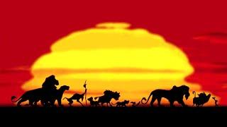 King Of Africa (Mashup) - Douster vs Danny da Costa & Steff da Campo