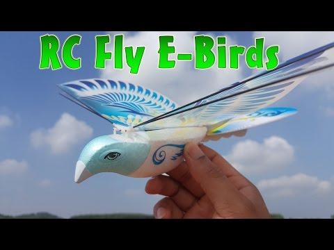 Распаковка, обзор и пробный полёт на радиоуправляемой птице E-Bird 98007