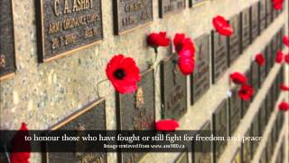 Why We Wear Poppies to Remember