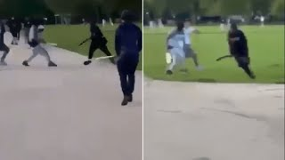 video: Hyde Park attack: horror scene as machete-wielding gang stabs young man