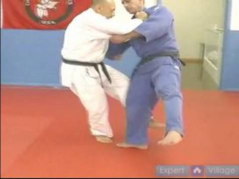 Judo Lessons for Beginners : How to Do a Hook to the Side Throw