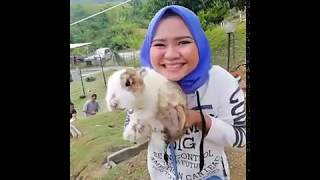 preview picture of video 'My Happy Family Kundasang DayTrip Holiday'