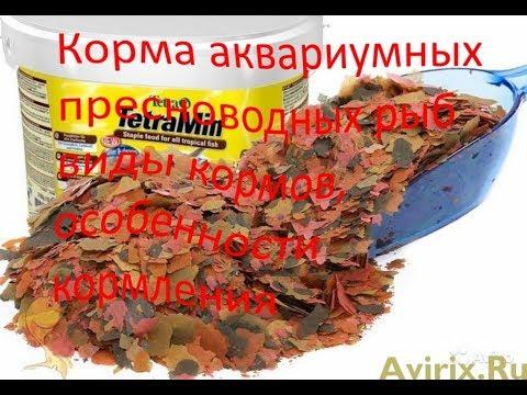 , title : 'Корма аквариумных пресноводных рыб виды кормов, особенности кормления