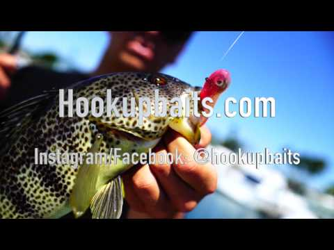 Harbor Fishing on Hookup Baits, Part 2 with Cameron