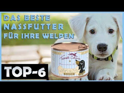 Die Besten 🔥 Nassfutter für Welpen 🐶 Im Vergleich 🔥 TOP 6