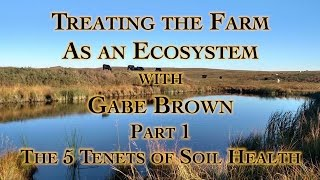 4,500 Acre No Till Cover Crop Farm Expert Gabe Brown Gets higher yields, more nutrient dense yields
