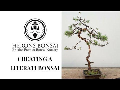 Literati Bonsai (in brief)