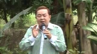 Mưa lạnh thảo cầm viên - NS Phan Thành Nu