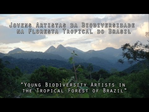 Young Biodiversity Artists- Tropical Forest Brazil