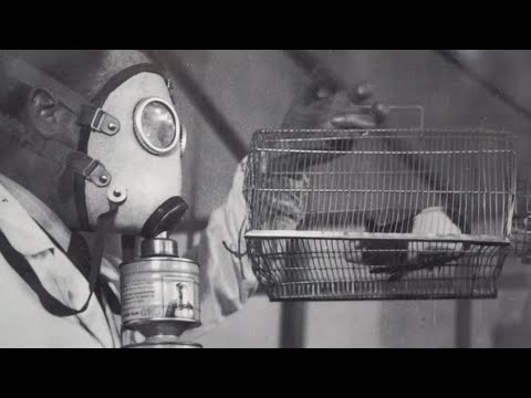 La storia dell'azienda che produce mascherine dal 1892