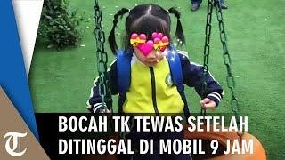 Murid TK Tewas Ditinggal Ayahnya 9 Jam di Dalam Mobil, Keluarga Salahkan Pihak Sekolah