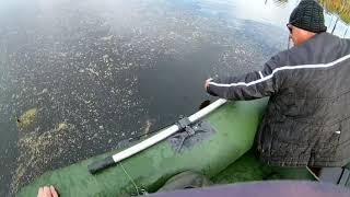 Озеро щучье ленинградская область рыбалка
