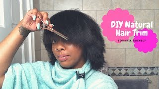 1 Year Post Big Chop | DIY Trim/Cut Natural Hair | Type 4 Natural Hair Journey