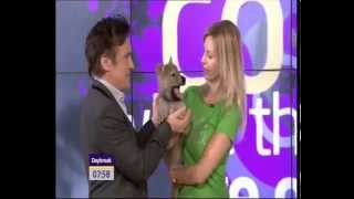 CUTE BABY WOLVES ON TV with Top Gear's Richard Hammond
