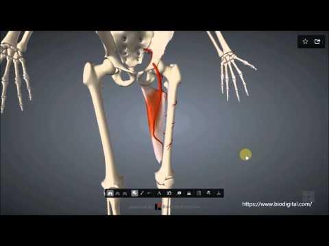 Als Brust Osteochondrose Heilung durch