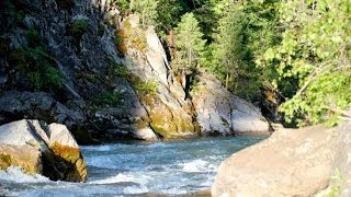 Wyoming Fly Fishing-Yellowstone River's and Snake River Tributaries