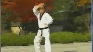 taekwondo poomse 16 hansoo