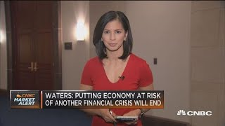 Rep. Waters: Putting economy at risk of another financial crisis to end