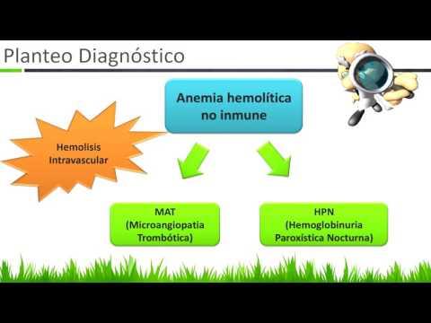La patología quirúrgica del pie diabético