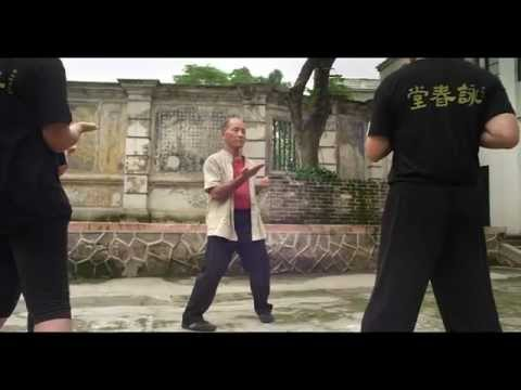 •· Streaming Online Wing Chun